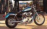 絵画風 壁紙ポスター (はがせるシール式) ハーレー ダビッドソン XL1200R スポーツスター 2007年 バイク キャラクロ HDXL-001W1 (ワ..