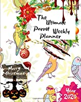 The Ultimate Merry Christmas Parrot Weekly Planner Year 2020: Best Gift For All Age, Keep Track Planning Notebook & Organizer Logbook For Weekly And Monthly Purpose To Create, Schedule And Manage To Achieve Your Goals With The Pretty Modern Calendar