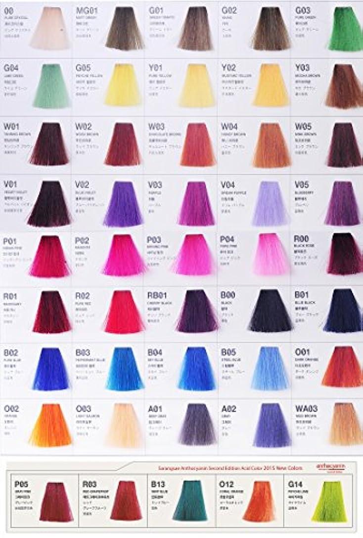 愛されし者養う望ましいアントシアニン ヘア マニキュア カラー セカンド エディション 230g セミ パーマネント 染毛剤 ( Hair Manicure Color Second Edition 230g Semi Permanent Hair Dye) [並行輸入品] (Y03 Mocha Brown)