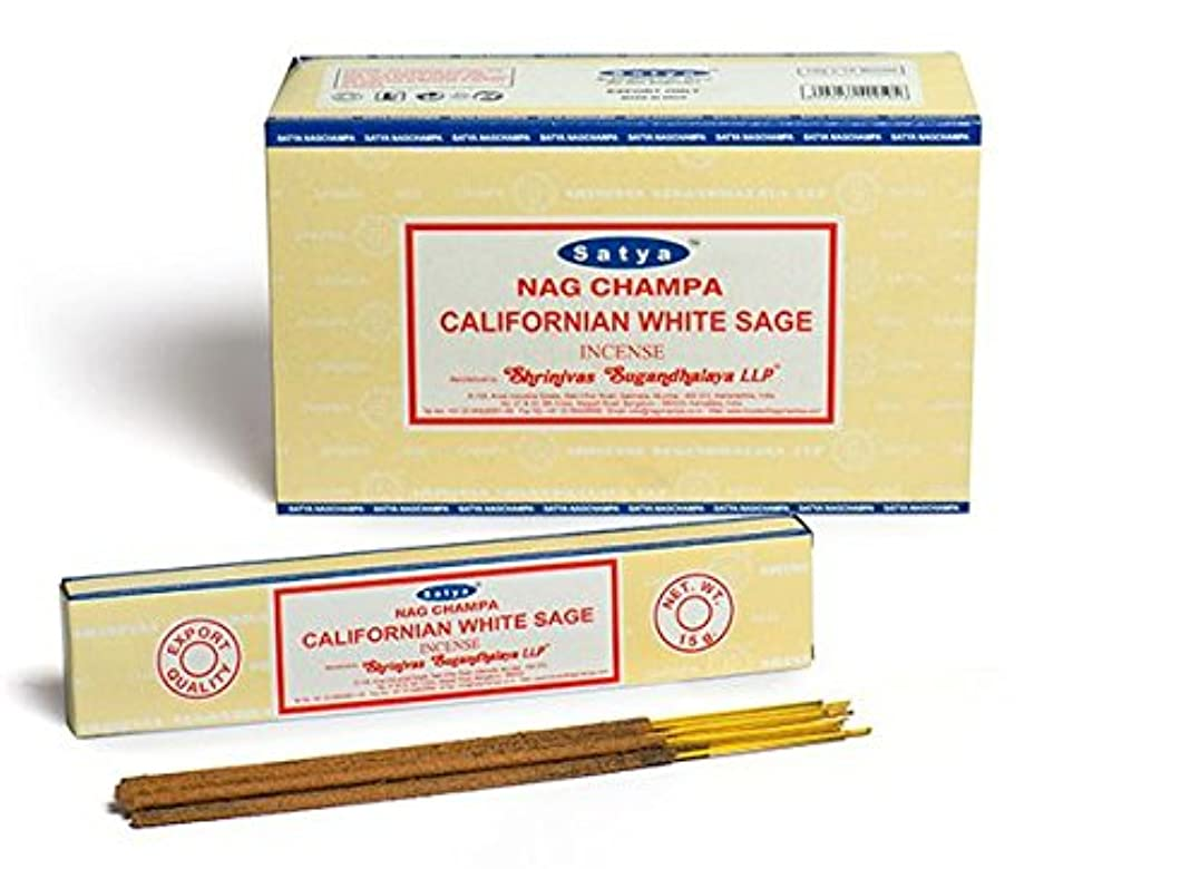 Satya Nag Champa カリフォルニアホワイトセージ香スティック Agarbatti 180グラムボックス | 15グラム入り12パック 箱入り | 輸出品質