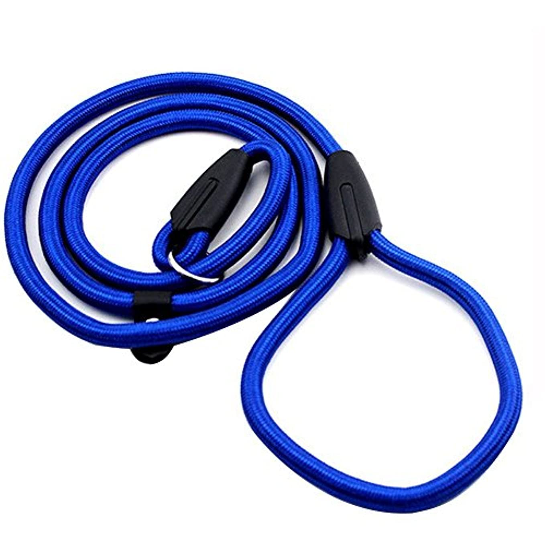 クラウドスリップあえてNrpfell 頑丈なペットの首輪ロープナイロン犬のスリップトレーニングウォーキングリードPチェーン1cm青色