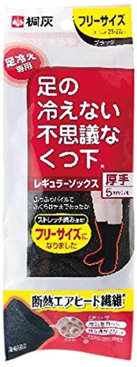 競う影響ビリー桐灰化学 足の冷えない不思議なくつ下 レギュラーソックス 厚手 足冷え専用 フリーサイズ 黒色 1足分(2個入)