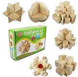 イロハ(ILOHA) 立体 パズル 6種類セット 3D 大人 知的玩具 攻略図 付き 天然木 難解 (天然木 6種類)