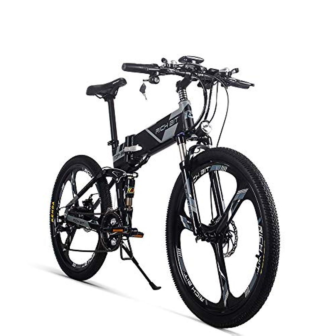 ホイットニー熱狂的なキャリアアシストストリートバイク自転車 RT860 36V* 12.8Ah 26インチ ダブルディスク式ブレーキ PAS動力航続システム 公道走行可能 通勤通学用 専用充電器付き 説明書付き 新品発売