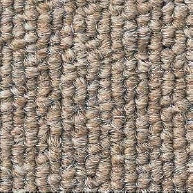 静電性?耐候性?耐薬品性に優れたタイルカーペット サンゲツ NT-350S ベーシックサイズ 50cm×50cm 20枚セット色番 NT-371S 【防炎】 【日本製】