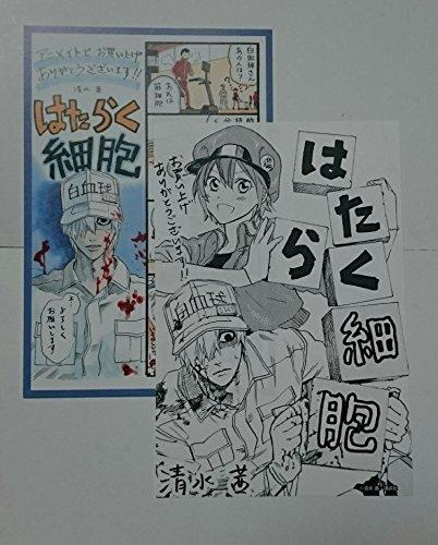 清水茜 はたらく細胞 1巻 特典 イラストカード ペーパー