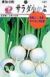フクカエン 愛知交配 サラダ小かぶの種(タネ)
