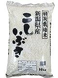 越後の米穀商高田屋 新潟県産 こしいぶき 10kg  29年産