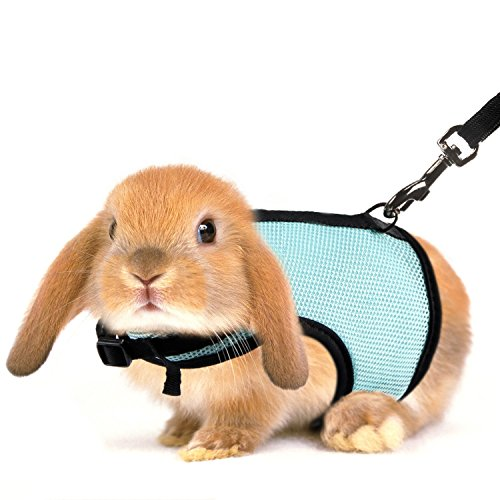 MEWTOGOうさぎ用ハーネス - 2点セット MとL リード お出かけ用 散歩用 迷子防止 調整可能 小動物用 モルモット テンジクネズミ フェレット