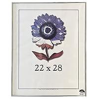 フレームUSAメタルI画像フレーム( 22x 28インチ) 22 X 28 シルバー 4124