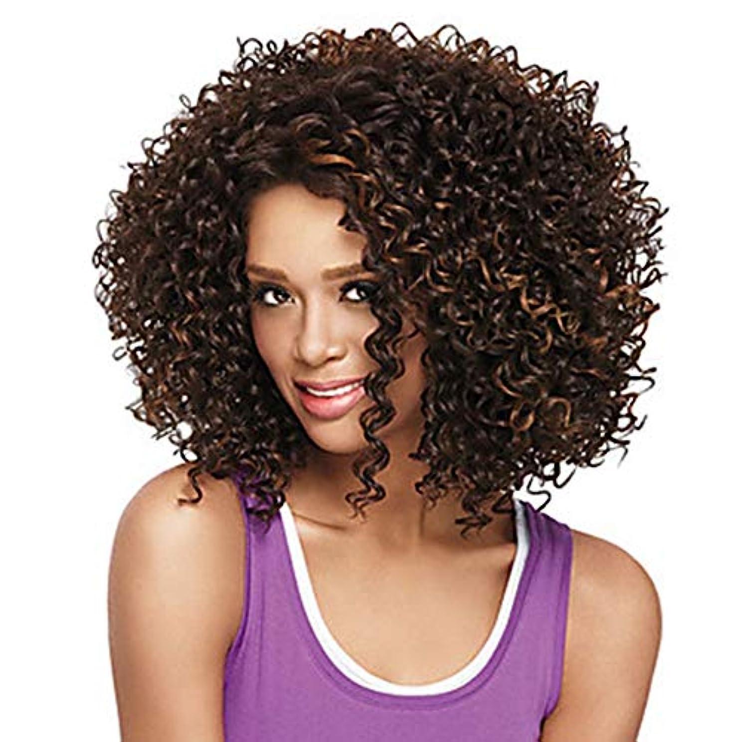 予感限られたディレイZXF アフリカの小さな巻き毛のかつらヨーロッパとアメリカの長い巻き毛の茶色の純ネットの高温絹の化学繊維のフード 美しい