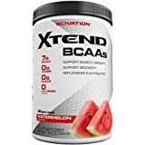 Scivation XTEND BCAA Powder for Recovery, Branched-Chain Amino Acids Supplement in Watermelon Flavour, 30 Servings