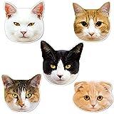 kmag 猫の顔マグネット 5種類セットA
