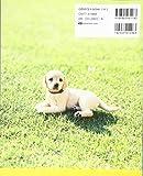 Making book 羊毛フェルトのリアルな愛犬 画像
