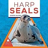 Harp Seals (Arctic Animals at Risk)