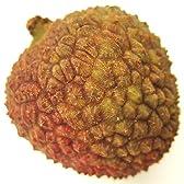 送料無料(一部地域除く)!トロピカルフルーツの最高品♪台湾産グリーンライチ玉荷包1kg無地箱