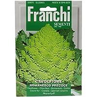 野菜の種 カリフラワー・ロマネスコ Romanesco Precoce 30/51