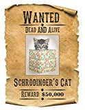"""Wanted Dead AND Alive - Schroedinger's Cat: 8.5"""" x 11"""" Blank Quadrille (quad) ruled Journal Notebook 120 pages of 5mm grid squared graph paper (Naughty Puppies)"""