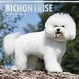 Bichon Frise 2018 Calendar