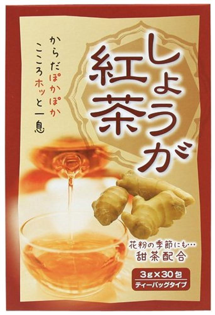 上げる阻害する反響するしょうが紅茶 3gX30包