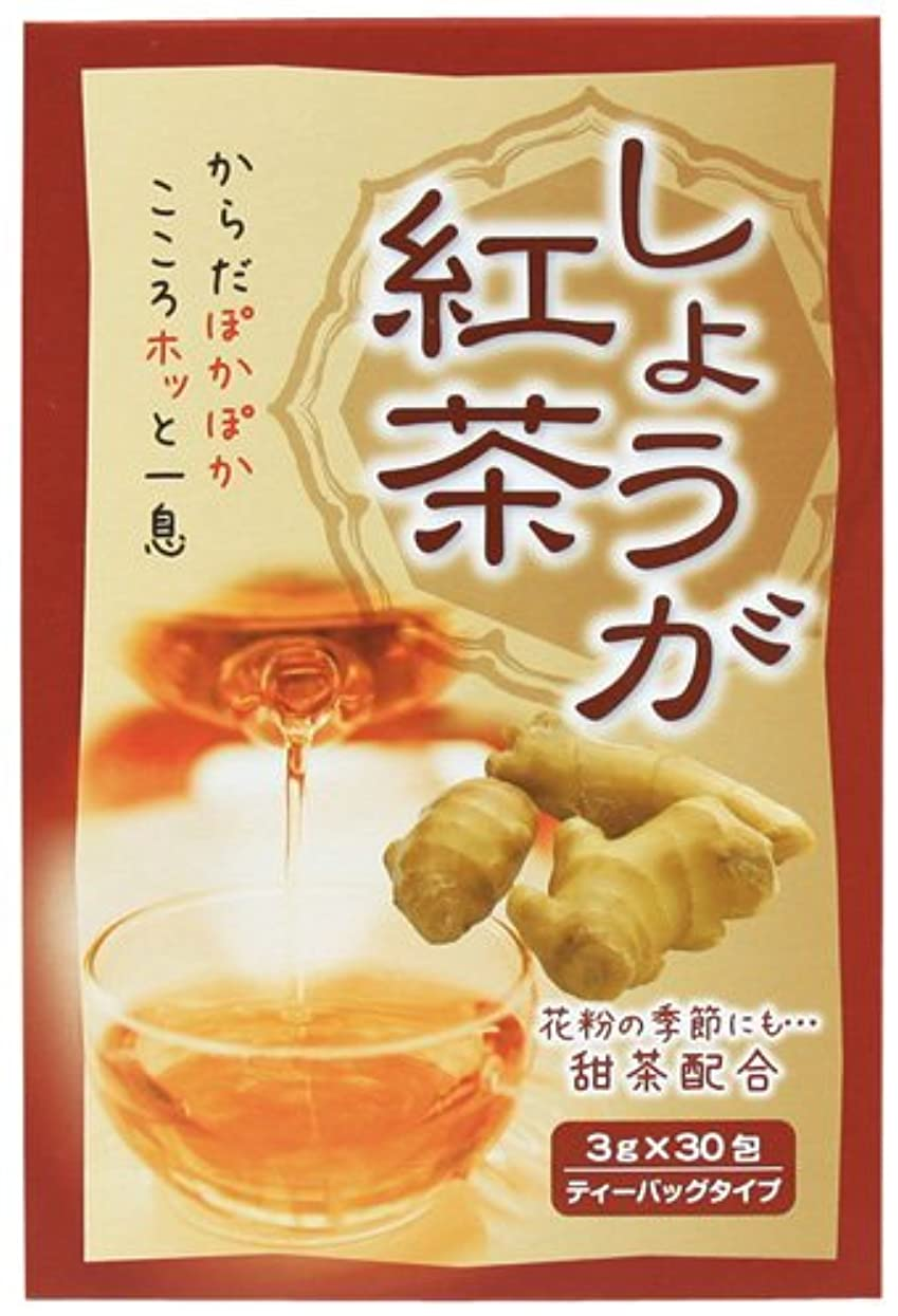 石化する毛布合併症しょうが紅茶 3gX30包