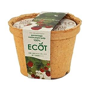 エコットS ワイルドストロベリーの関連商品6