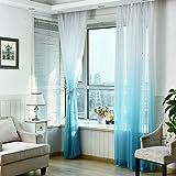Demiawaking レースカーテン 透明 グラジエント色 風通し 視線カット 揺がれる 薄手 エレガント カーテン装飾 雰囲気変貌 1m*2.7m (ブルー)