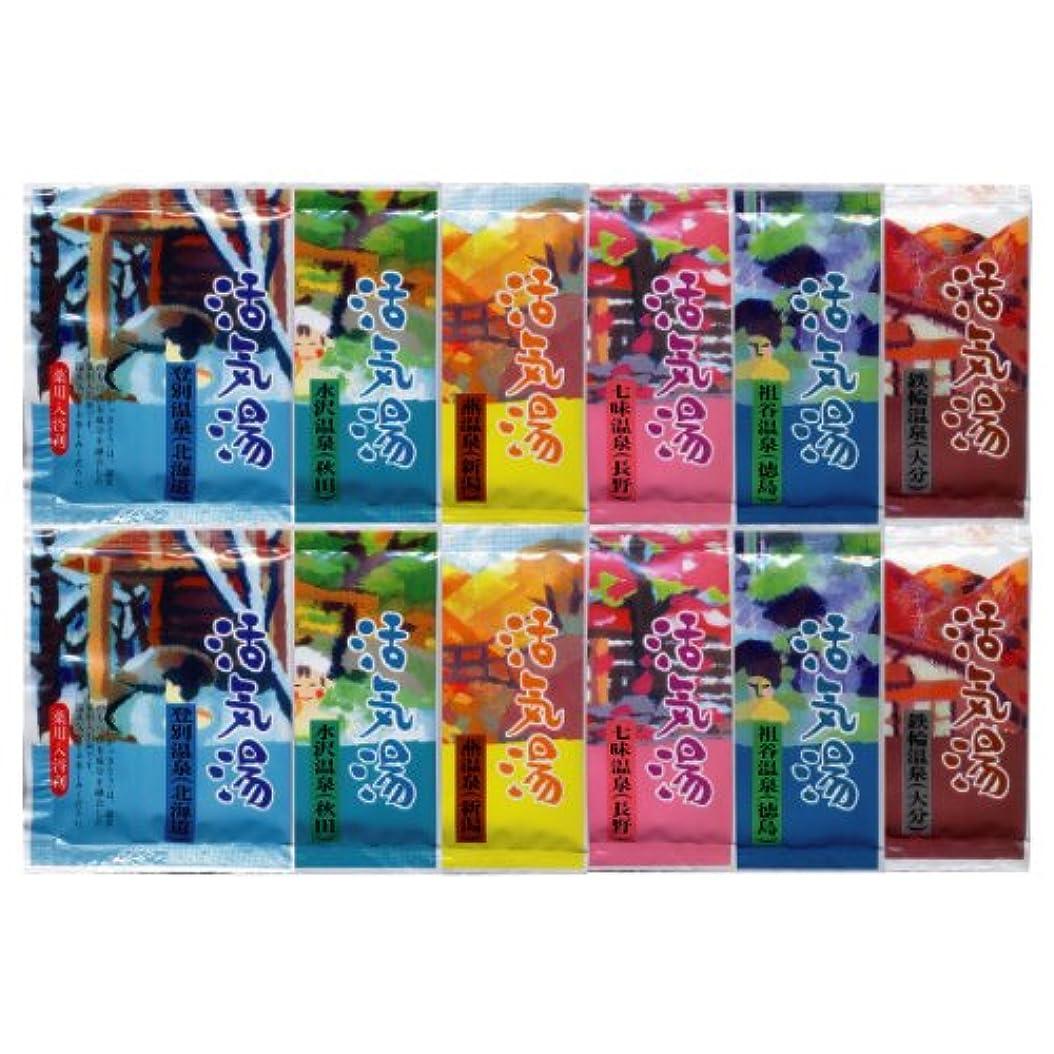 ポンプ騒々しい既婚薬用入浴剤 活気湯 6種類×2 12包