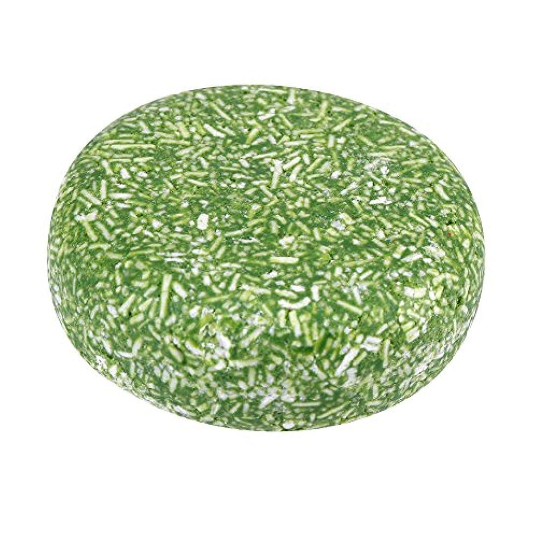 フィッティングキャメルギャラリーオーガニック手作り冷たいシナモンシャンプーバー100%ピュアヘアシャンプー(グリーン)