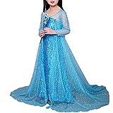 エルサ ドレス 子供用 女の子 キッズ 衣装 ハロウィン コスチューム 女王 ドレス (110cm)