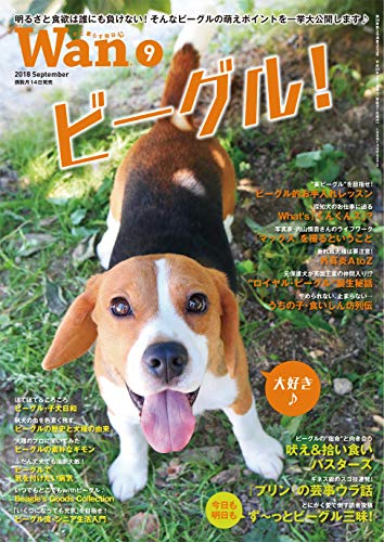 Wan 2018年 09 月号 [雑誌]