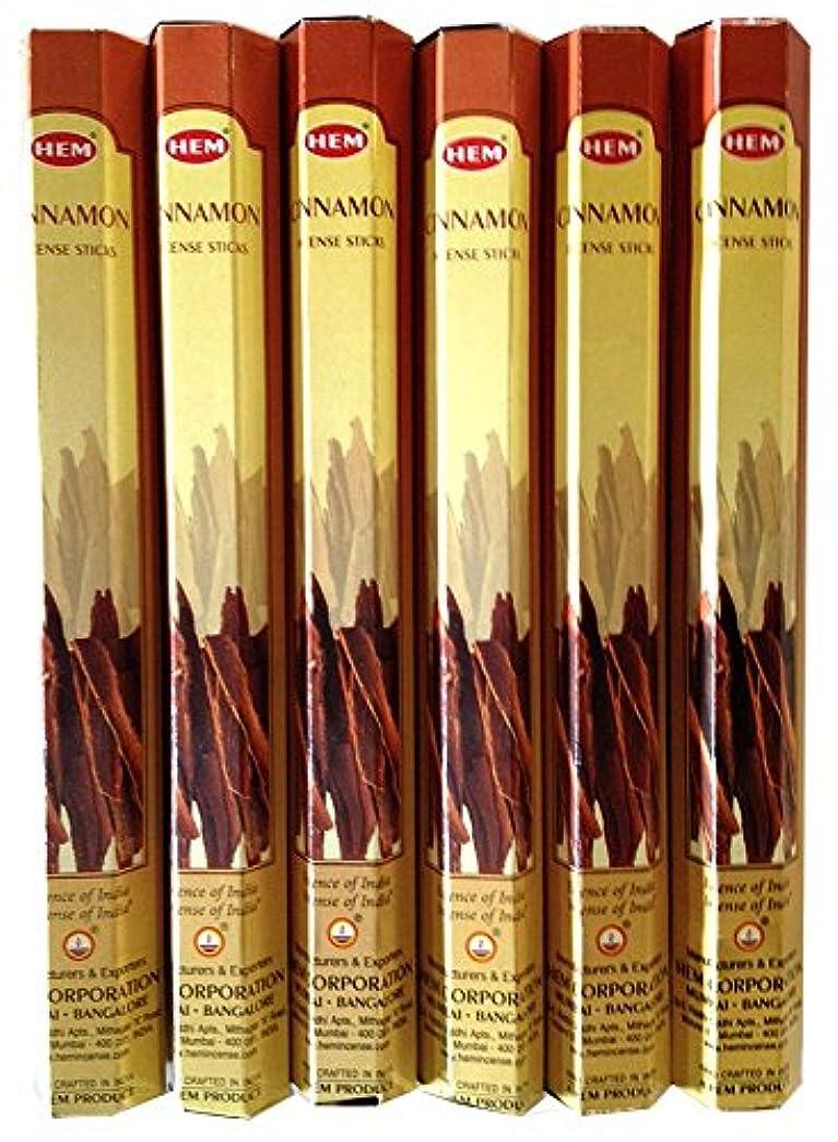 飢え消化器シンカンHEM シナモン 6個セット