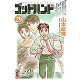 ゴッドハンド輝(29) (講談社漫画文庫)