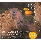 【バーゲンブック】 カピバラでぽっかぽか-癒しのカピバラフォトガイド