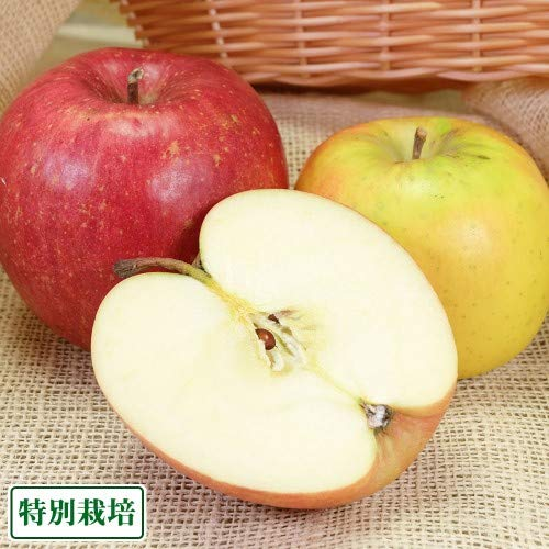青森りんご2色セット A品3kg箱 特別栽培 (青森県 田村りんご農園) 産地直送 ふるさと21