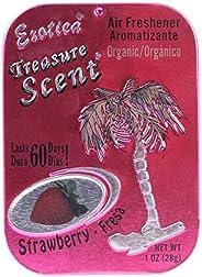 Exotica 76TSC24STR Strawberry Scent Treasure Organic Air Freshener Tin