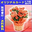 H-4 花生産量日本一の産地から送る カーネーション オレンジ 5号鉢(母の日カード・育て方のしおり付き)≪愛知県≫