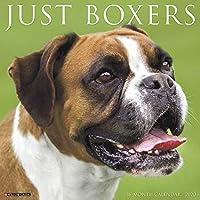 Just Boxers 2020 Calendar
