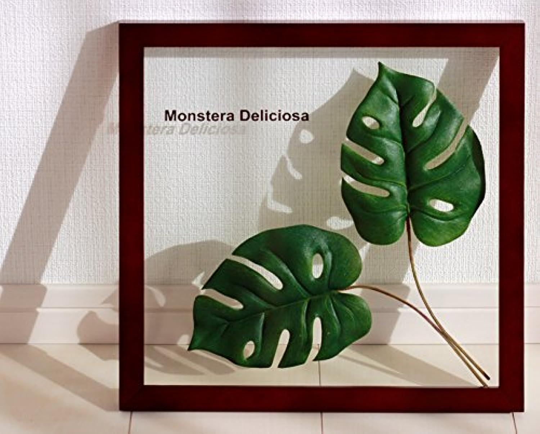 リーフパネル Forest Deco Monstera Deliciosa2(モンステラ デリシオサ)/ 絵画 壁掛け のあゆわら