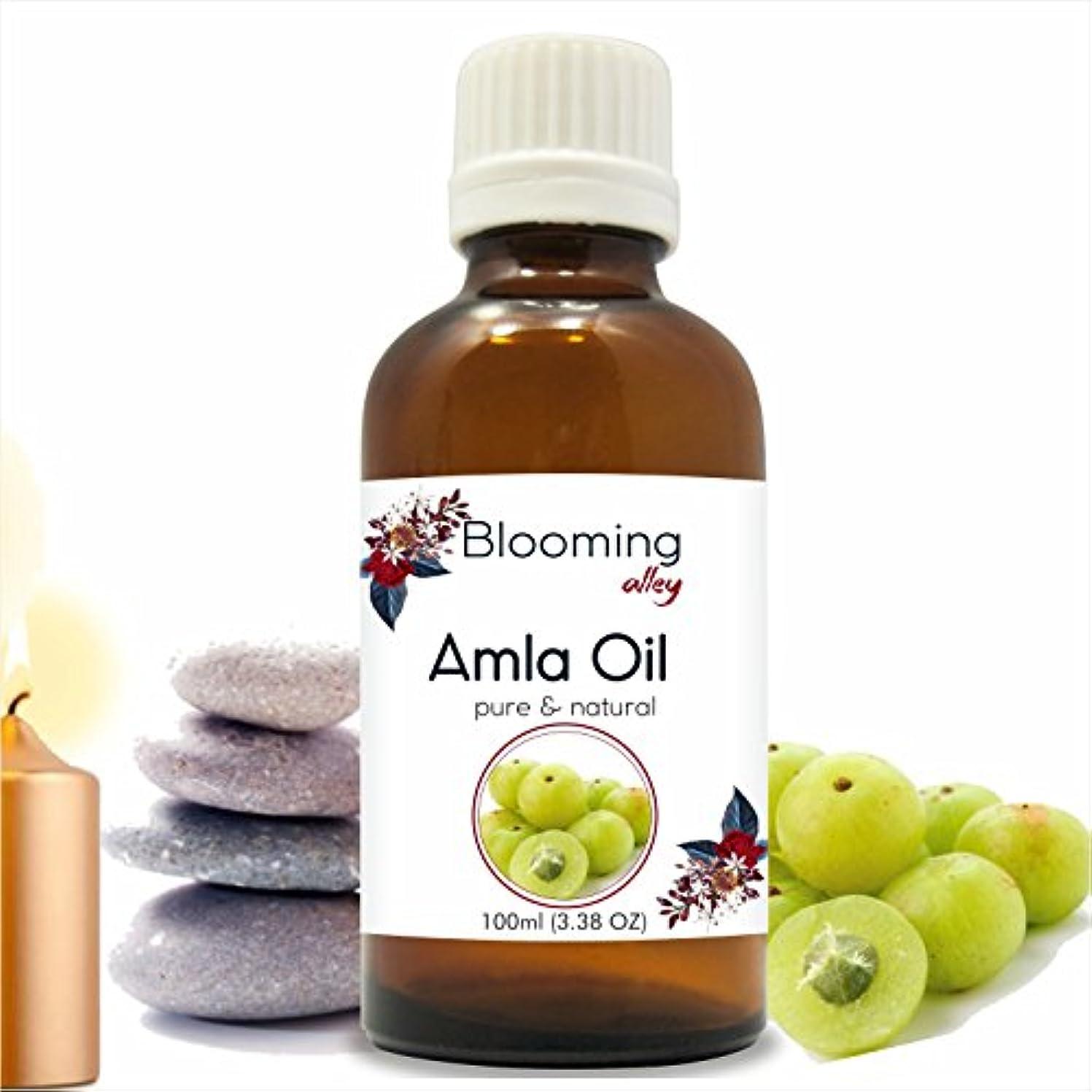 病的舌な議題AMLA Indian Gooseberry (Emblica officinalis) Infused Oil 100ML