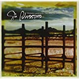 Outside Looking In: The Best Of Gin Blossoms