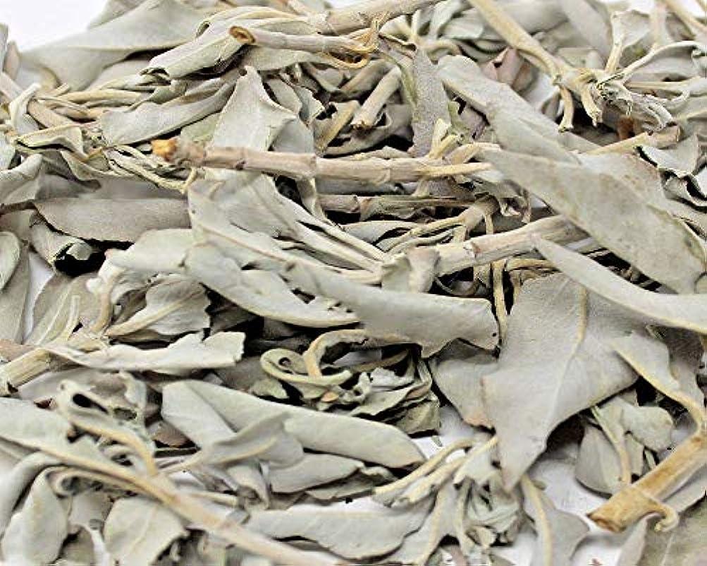 苦しむ束フォームホワイトセージLoose Leaves 3.5 Oz byボタニカAchaba
