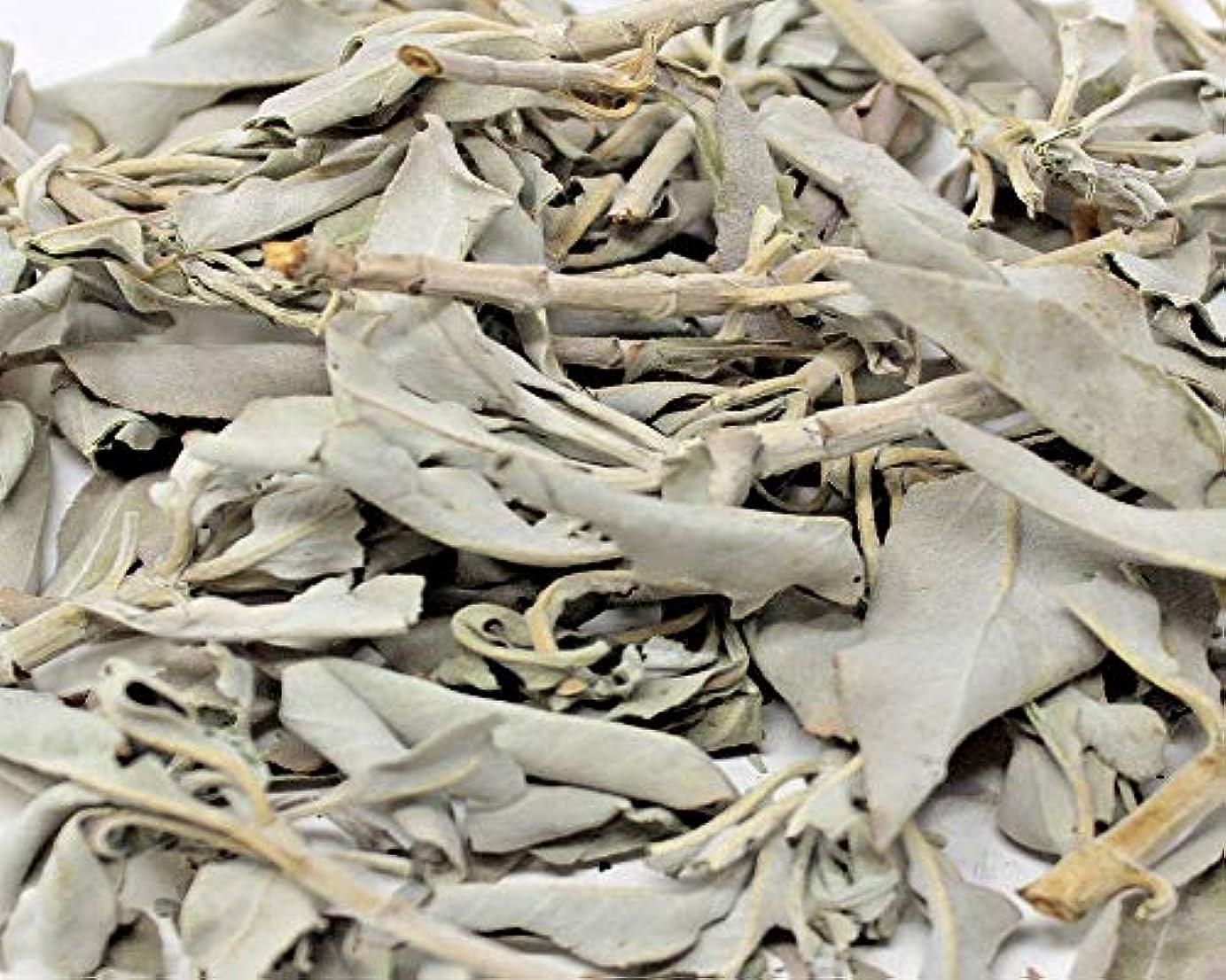 拒絶明らか確立ホワイトセージLoose Leaves 3.5 Oz byボタニカAchaba