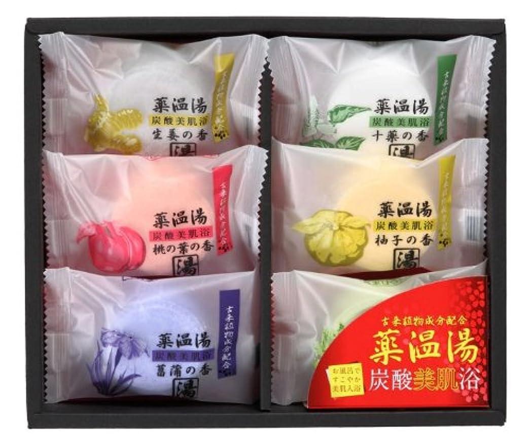 接続された夕食を作る産地薬温湯 炭酸美肌浴セット POD-10