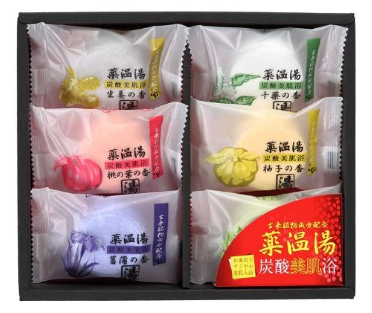 薬温湯 炭酸美肌浴セット POD-10