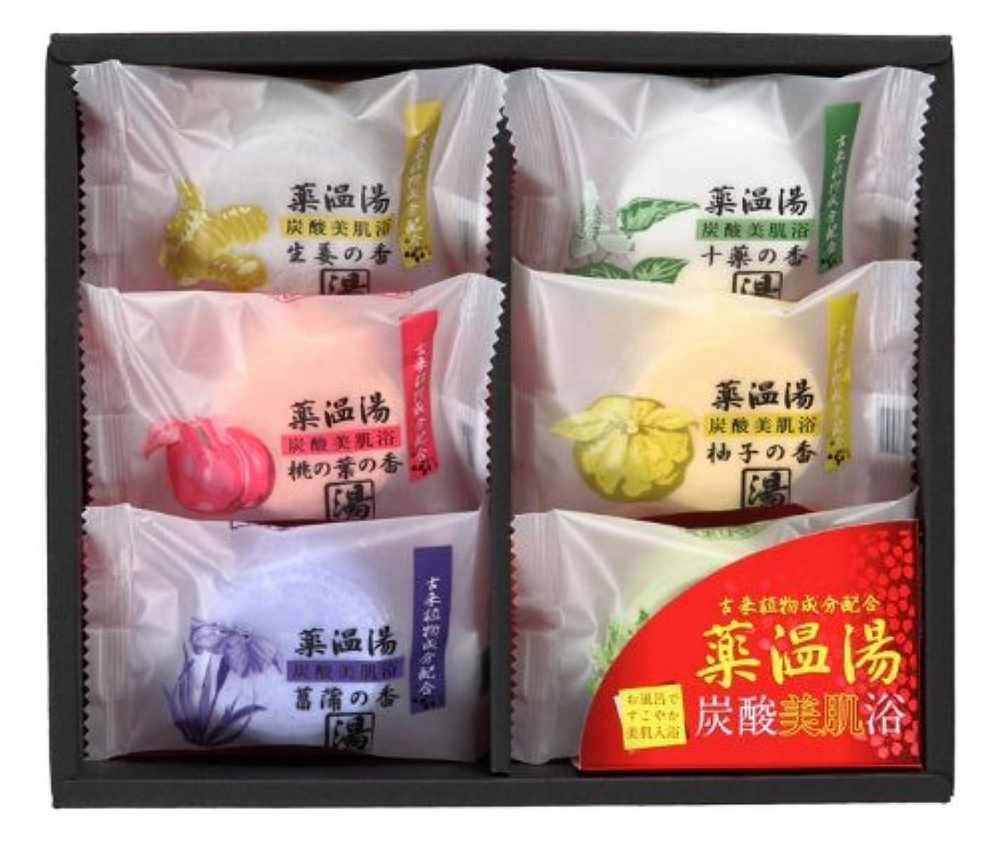 苛性健康アパル薬温湯 炭酸美肌浴セット POD-10