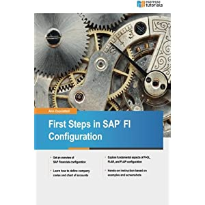 First Steps in Sap Fi Configuration