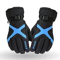 GOOACC 防寒用手袋 スキー・バイクグローブ 男性用カッコイイ手袋 バイクハンドルカバー (ブルー)