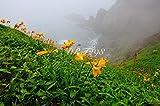 【おすすめ インテリアポスター】北海道の風景写真 襟裳岬の朝 o 59.4×42.0cm ポスターで癒しの空間に!お部屋、お店のインテリアにどうぞ。フレームに入れると豪華です。