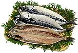 甲羅組 肉厚 とろサバ 開き 3枚入 干物 鯖